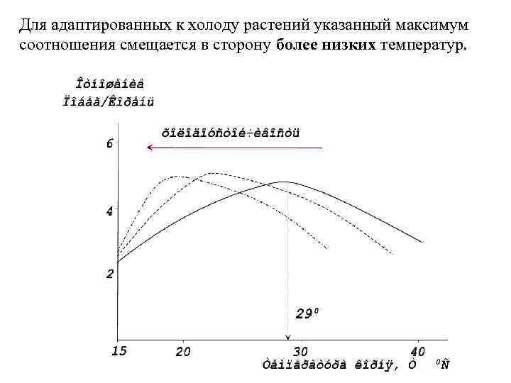 Для адаптированных к холоду растений указанный максимум соотношения смещается в сторону более низких температур.