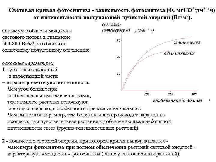 Световая кривая фотосинтеза - зависимость фотосинтеза (Ф, мг. СО 2/дм 2 *ч)