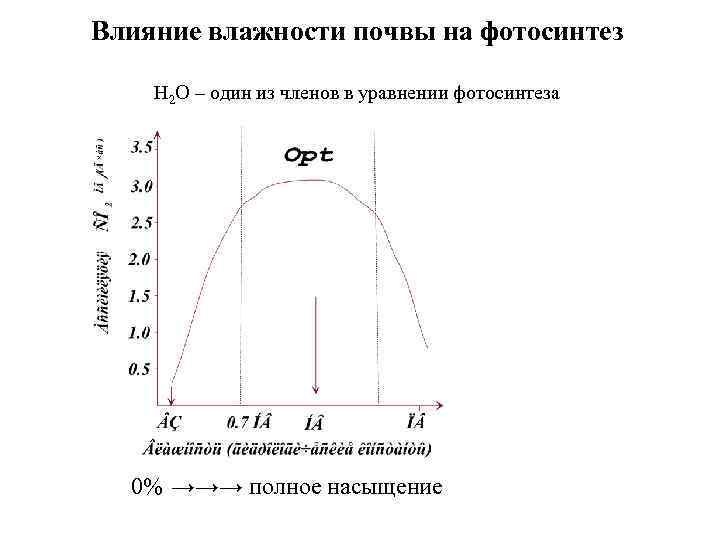 Влияние влажности почвы на фотосинтез Н 2 О – один из членов в уравнении