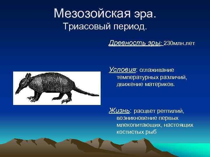 Мезозойская эра.  Триасовый период.  Древность эры: 230 млн. лет   Условия: