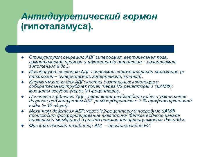 Антидиуретический гормон (гипоталамуса).  l  Стимулируют секрецию АДГ гиперосмия, вертикальная поза,  симпатические