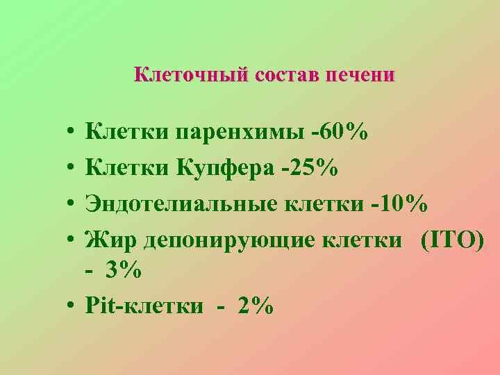 Клеточный состав печени  • Клетки паренхимы -60% • Клетки Купфера -25%