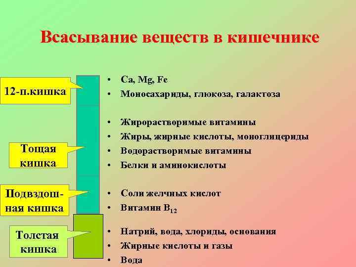 Всасывание веществ в кишечнике    • Ca, Mg, Fe 12 -п.