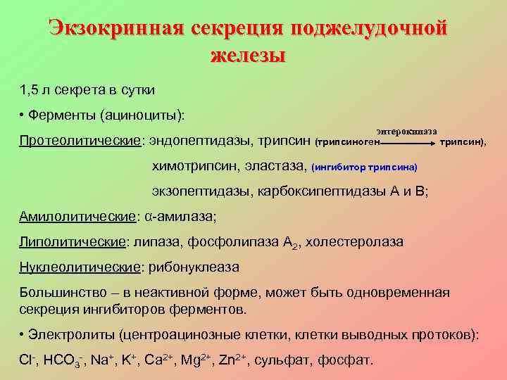 Экзокринная секреция поджелудочной    железы 1, 5 л секрета в