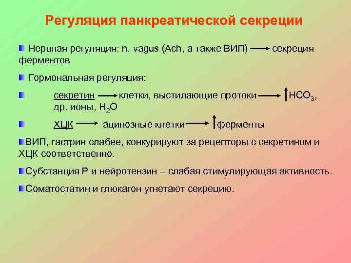 Регуляция панкреатической секреции Нервная регуляция: n. vagus (Ach, а также ВИП)  секреция