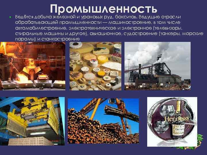 Промышленность Ведётся добыча железной и урановых руд, бокситов. Ведущие отрасли