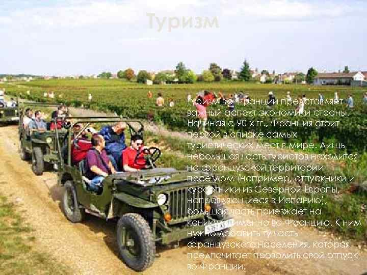 Туризм во Франции представляет  важный аспект экономики страны. Начиная с 90 -х гг.