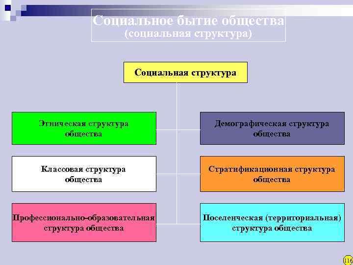 Социальное бытие общества     (социальная структура)