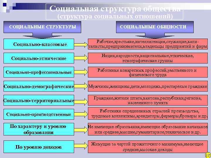 Социальная структура общества     (структура социальных отношений)