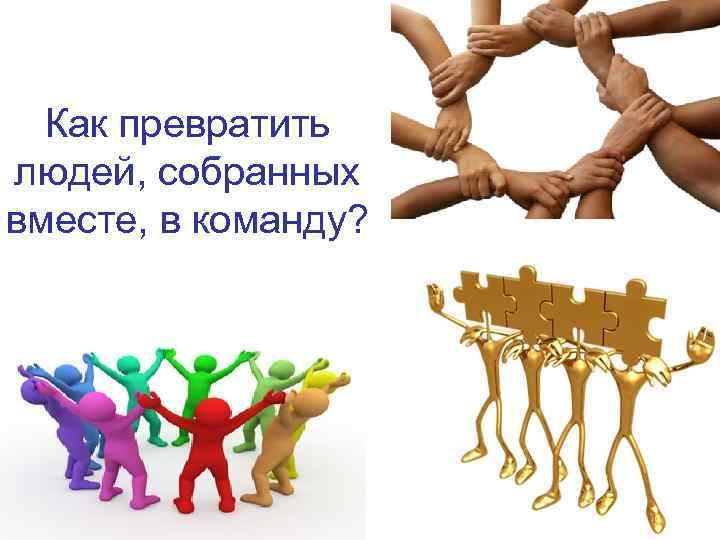 Как превратить людей, собранных вместе, в команду?