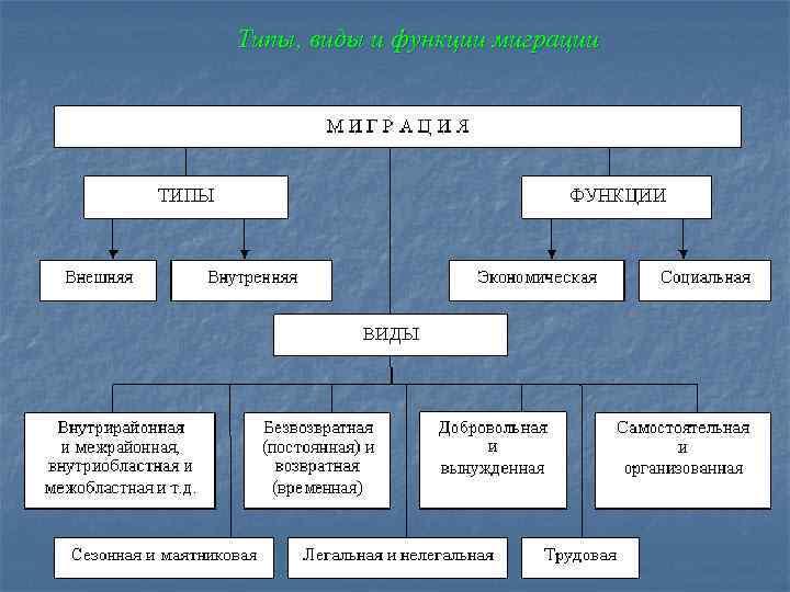 Типы, виды и функции миграции