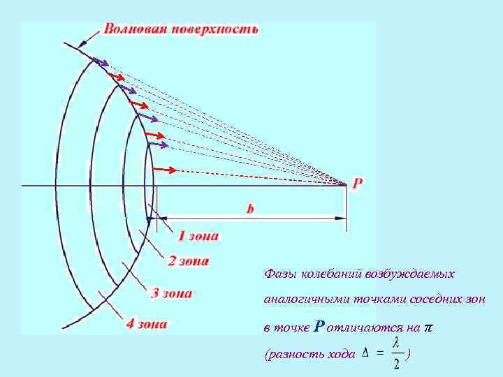 Фазы колебаний возбуждаемых аналогичными точками соседних зон  в точке Р отличаются на π