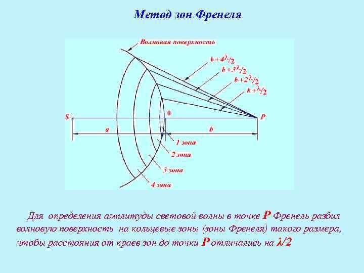 Метод зон Френеля   Для определения амплитуды световой