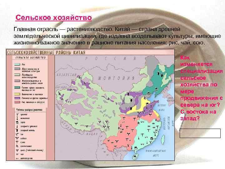 Сельское хозяйство Главная отрасль — растениеводство. Китай — страна древней земледельческой цивилизации, где издавна