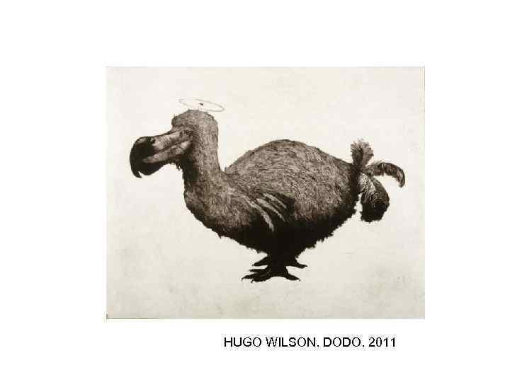 HUGO WILSON. DODO. 2011
