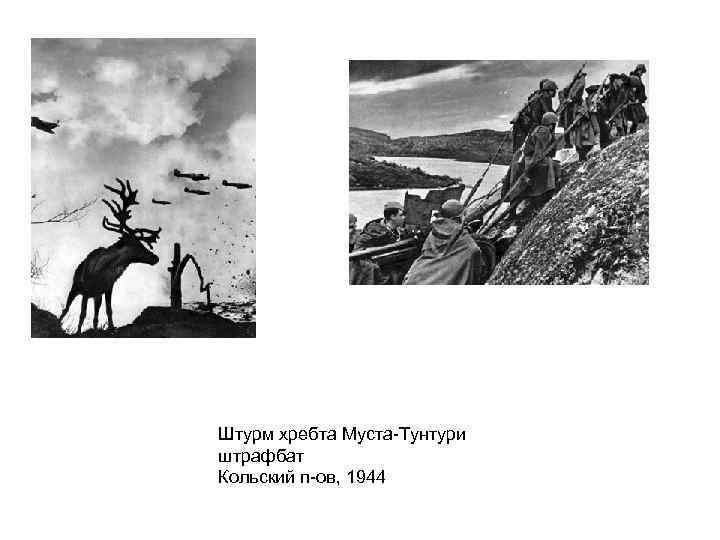 Штурм хребта Муста-Тунтури штрафбат Кольский п-ов, 1944
