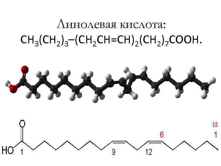 Линолевая кислота: CH 3(CH 2)3–(CH 2 CH=CH)2(CH 2)7 COOH.