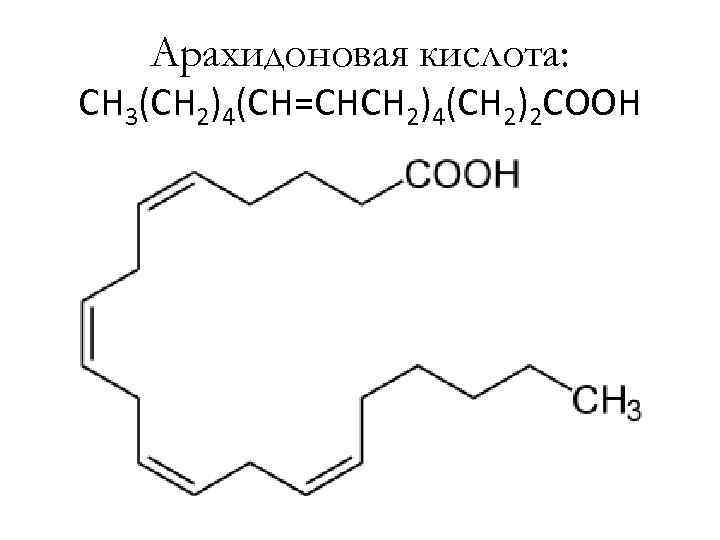 Арахидоновая кислота: CH 3(CH 2)4(CH=CHCH 2)4(CH 2)2 COOH