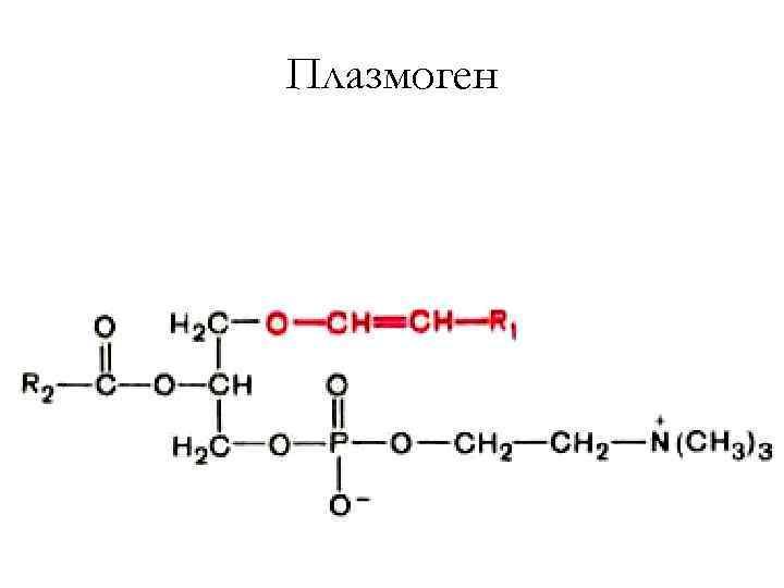 Плазмоген