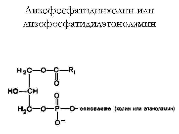 Лизофосфатидинхолин или лизофосфатидилэтоноламин