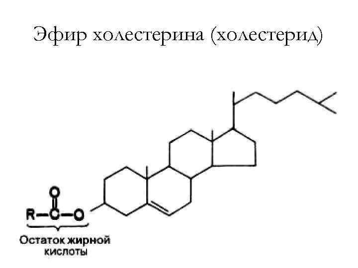 Эфир холестерина (холестерид)