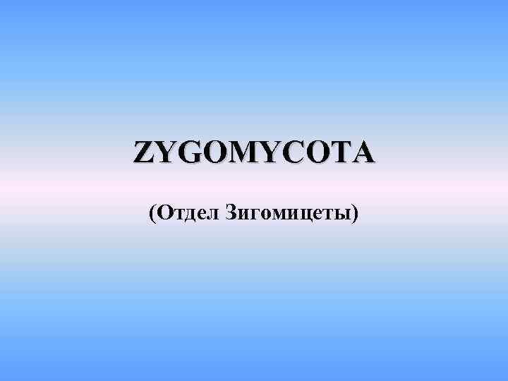 ZYGOMYCOTA (Отдел Зигомицеты)