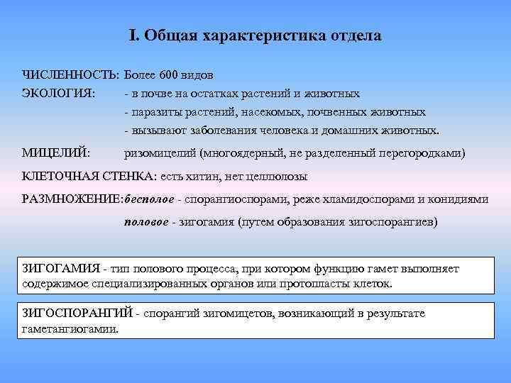 I. Общая характеристика отдела ЧИСЛЕННОСТЬ: Более 600 видов ЭКОЛОГИЯ: - в
