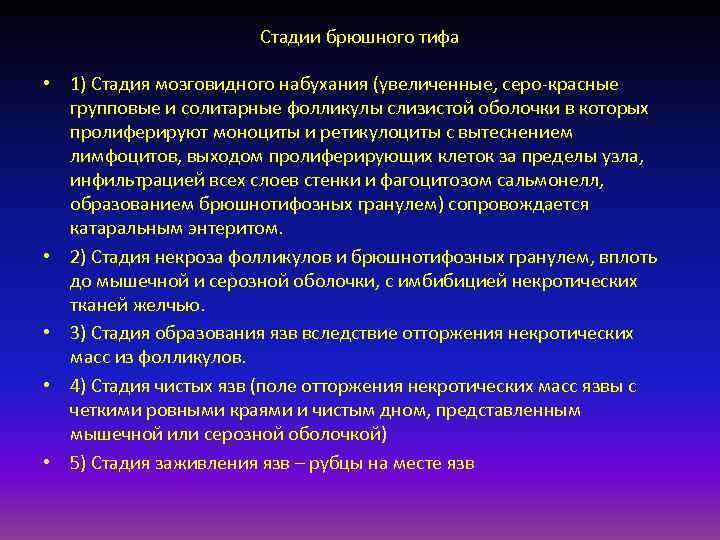 Стадии брюшного тифа  • 1) Стадия мозговидного набухания