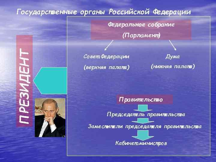 Государственные органы Российской Федерации     Федеральное собрание