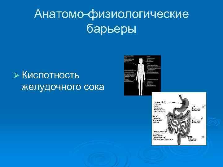 Анатомо-физиологические   барьеры  Ø Кислотность желудочного сока