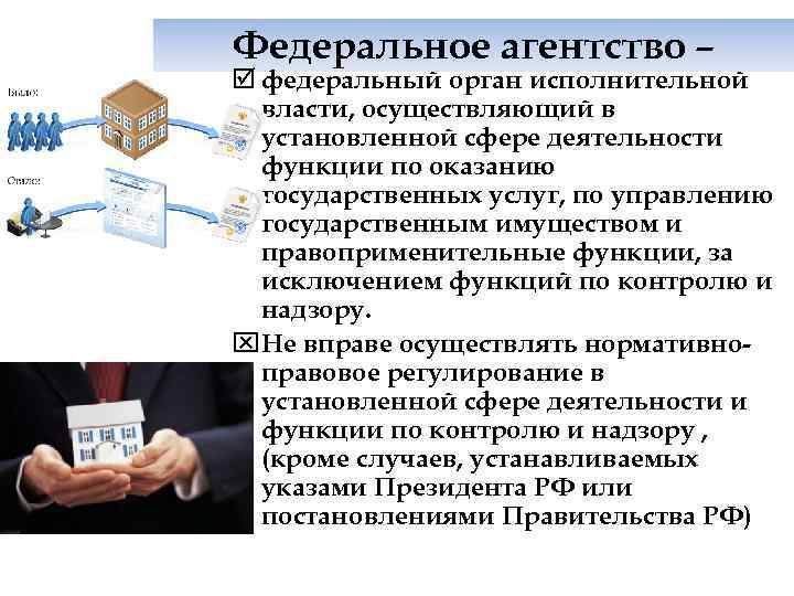 Федеральное агентство – þ федеральный орган исполнительной  власти, осуществляющий в  установленной сфере