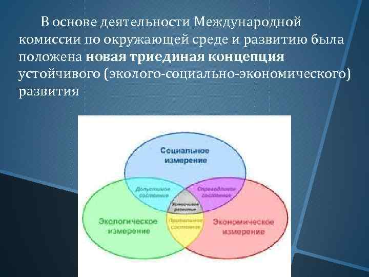 В основе деятельности Международной комиссии по окружающей среде и развитию была положена