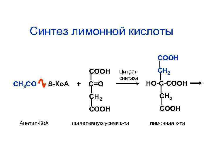 Синтез лимонной кислоты     СООН  Цитрат- СН 2