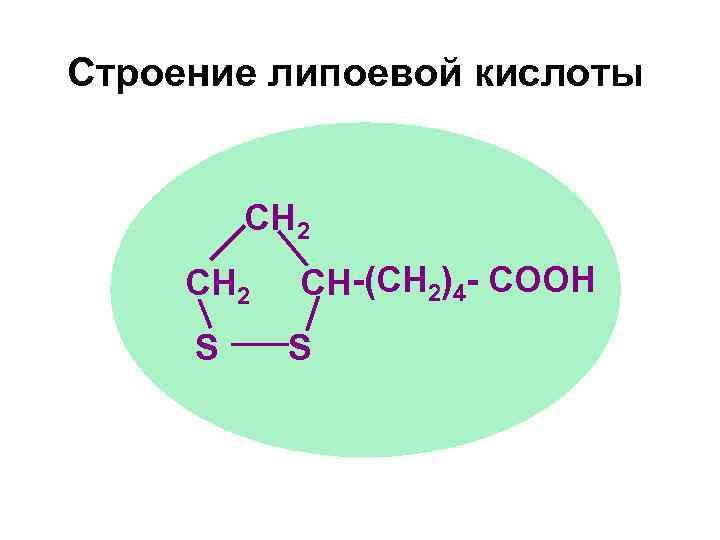 Строение липоевой кислоты  CH 2  CH-(CH 2)4 - СООН S S