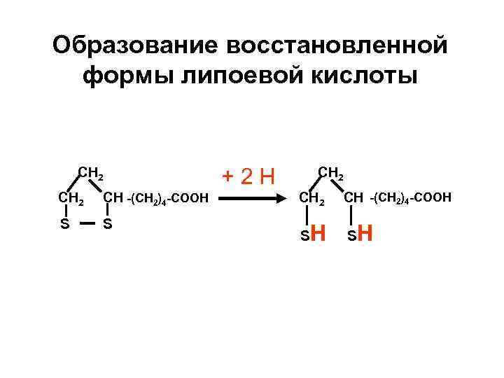 Образование восстановленной  формы липоевой кислоты  CH 2   +2 Н CH