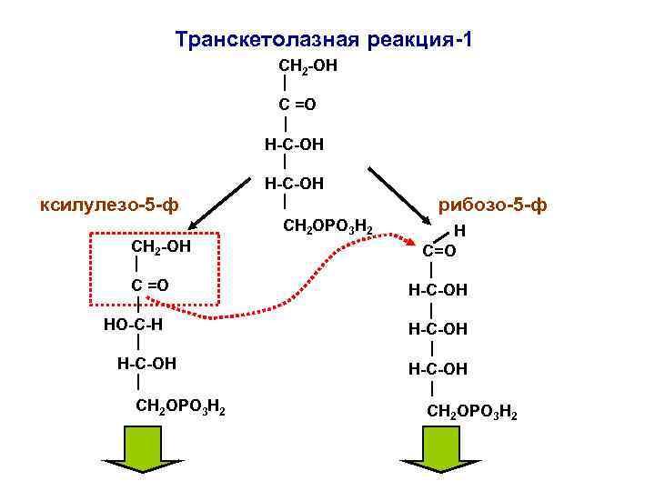 Транскетолазная реакция-1    СН 2 -ОН