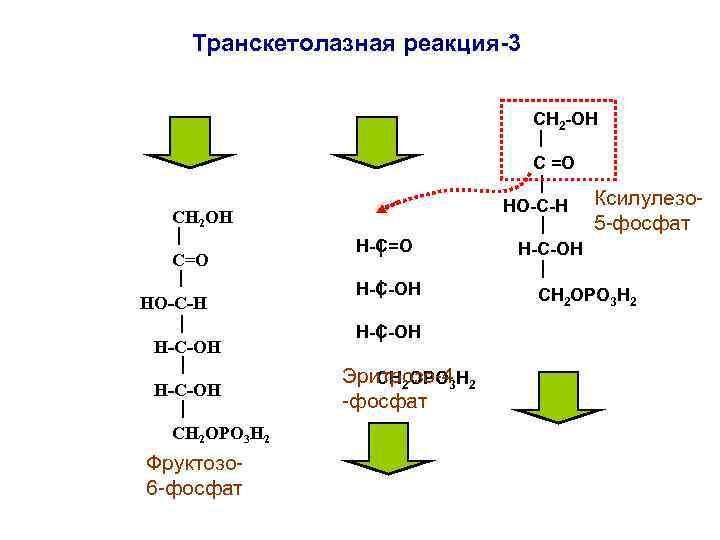 Транскетолазная реакция-3      СН 2 -ОН