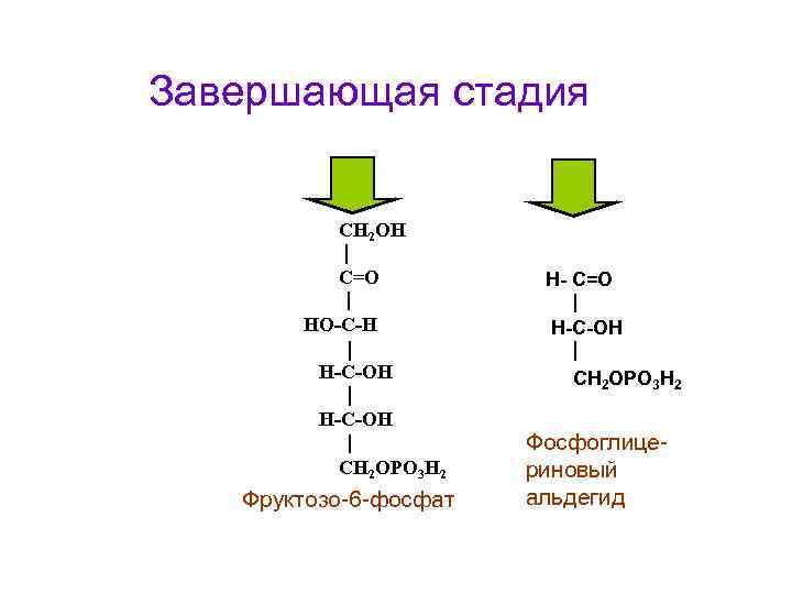 Завершающая стадия   СН 2 ОН  С=О  Н- С=О