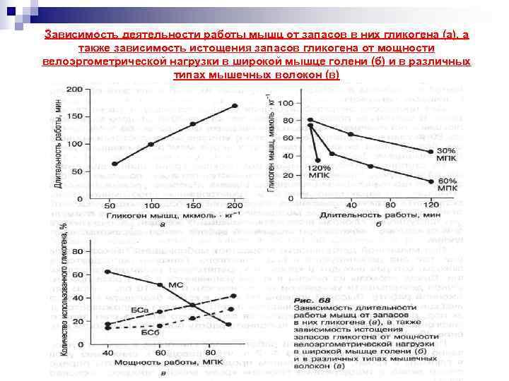 Зависимость деятельности работы мышц от запасов в них гликогена (а), а также зависимость истощения