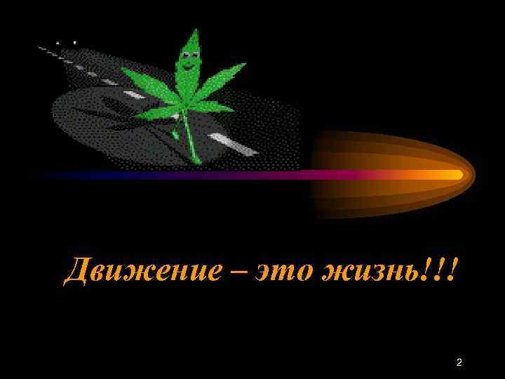 Движение – это жизнь!!!    2