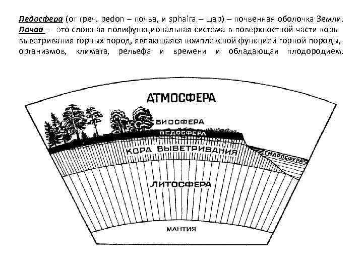 Педосфера (от греч. pedon – почва, и sphaira – шар) – почвенная оболочка Земли.
