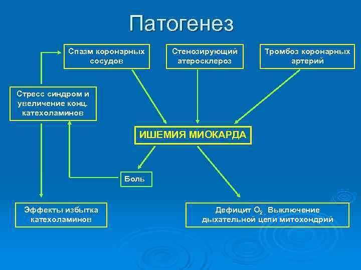 Патогенез  Спазм коронарных  Стенозирующий Тромбоз коронарных