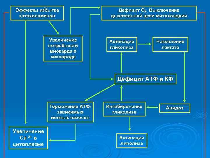 Эффекты избытка    Дефицит О 2. Выключение катехоламинов   дыхательной цепи