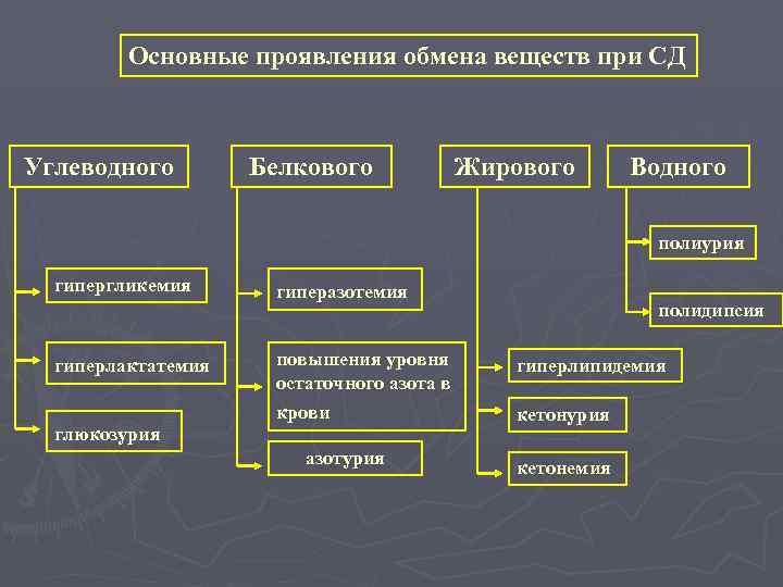 Основные проявления обмена веществ при СД  Углеводного   Белкового