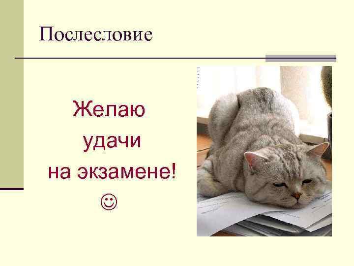 Послесловие Желаю удачи на экзамене!