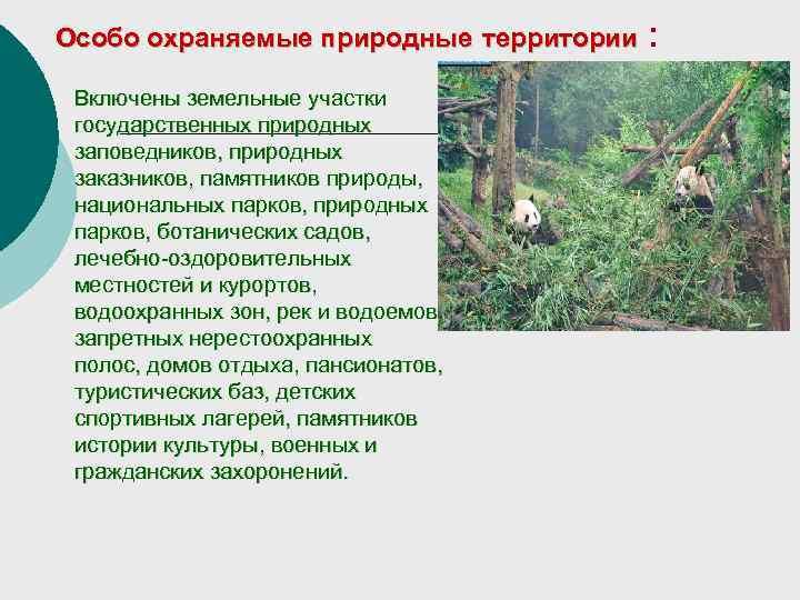 Особо охраняемые природные территории  :  Включены земельные участки государственных природных заповедников, природных