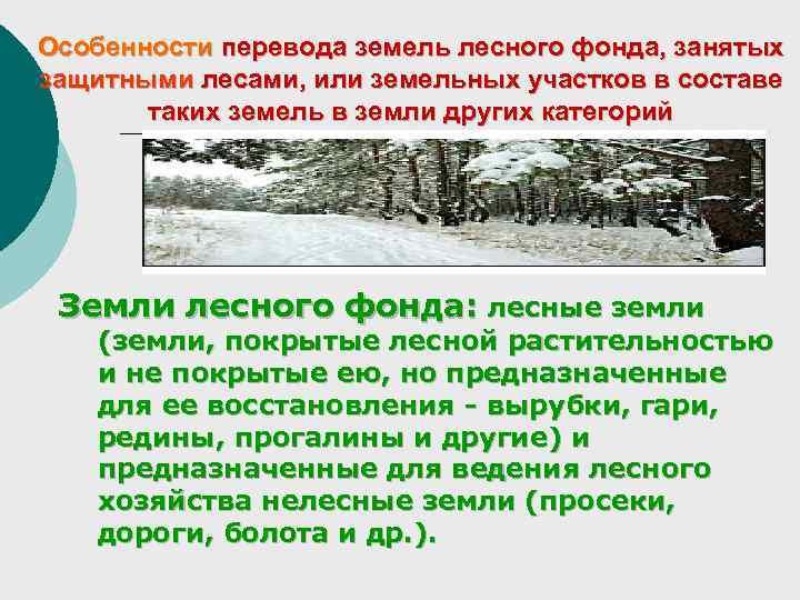 Особенности перевода земель лесного фонда, занятых защитными лесами, или земельных участков в составе