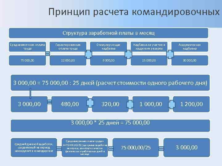 Принцип расчета командировочных      Структура заработной