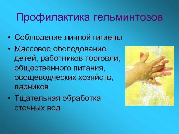 Профилактика гельминтозов • Соблюдение личной гигиены • Массовое обследование  детей, работников торговли,
