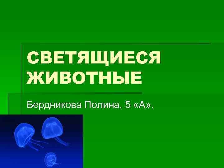СВЕТЯЩИЕСЯ ЖИВОТНЫЕ Бердникова Полина, 5 «А» .